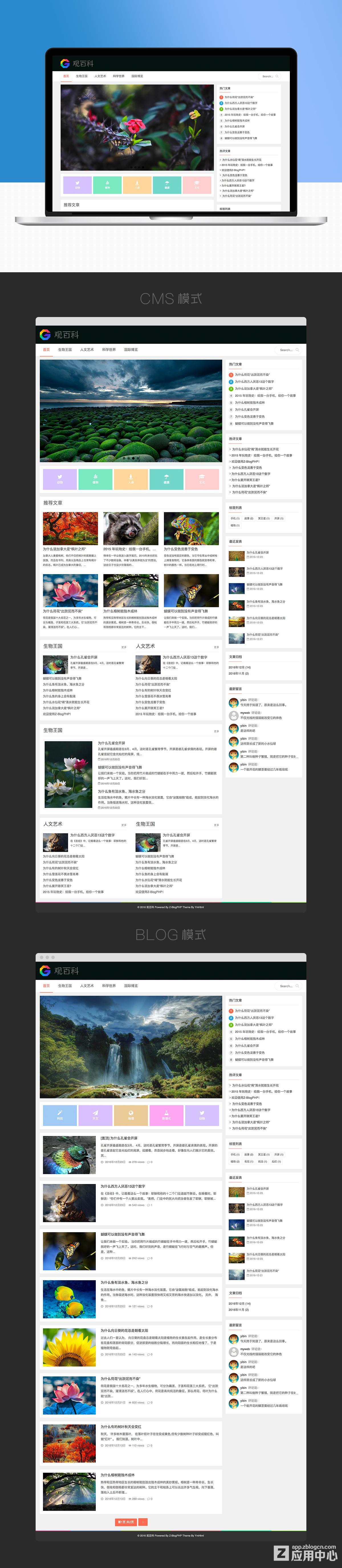 zblog高性价比主题,多布局响应式主题 建站模板 第8张